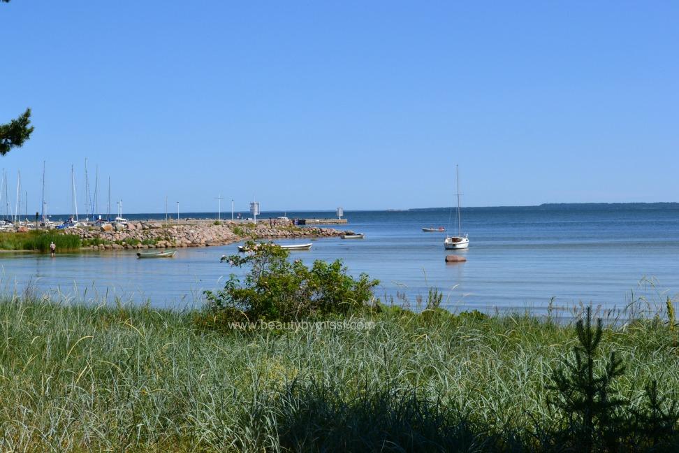 Lohusalu marina & beach