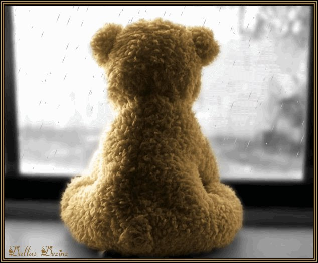 Such A Lonely Teddy Bear