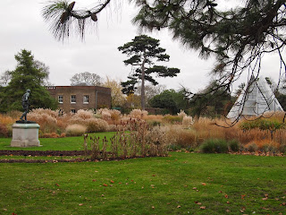 Winter at Kew Gardens, London. Photo by garden designer Oliver Borrow.