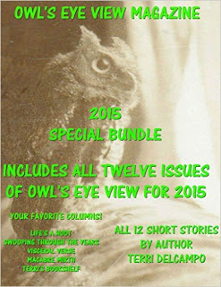 OWL'S EYE VIEW MAGAZINE - VOLUME 6- 2015 YEAR END BUNDLE - BY TERRI DELCAMPO