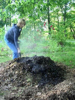 Don't cha wish your compost pile was hot like me? Don't cha?
