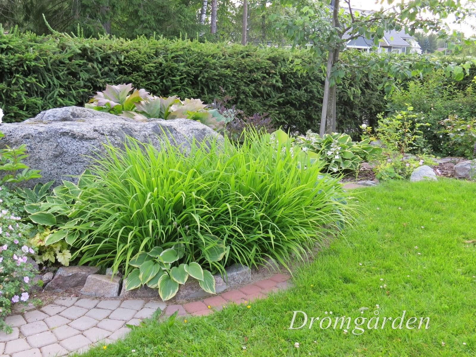 Drömgården: ett hörn i trädgården...