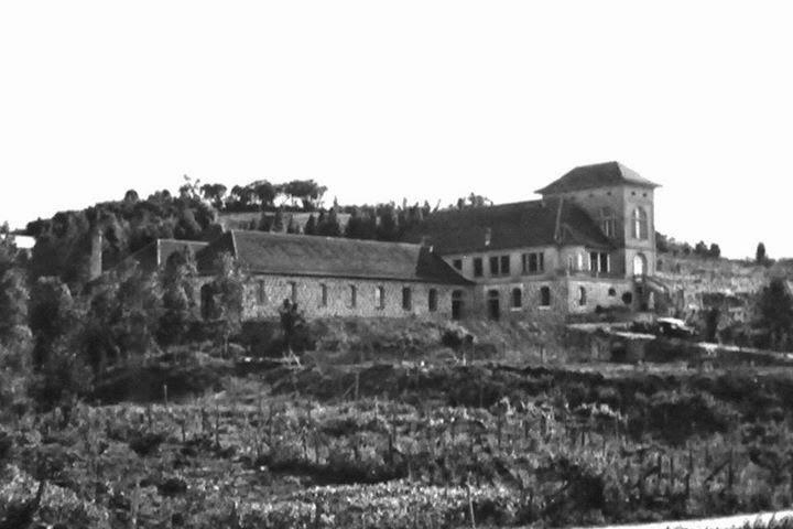 100 Anos Peterlongo