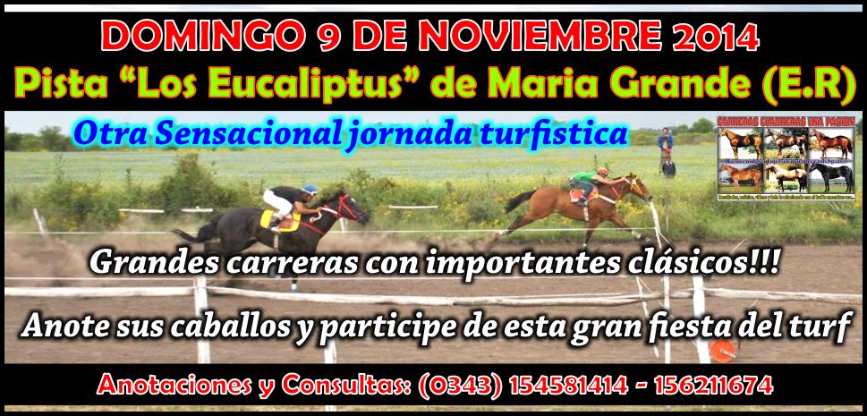 MARIA GRANDE - REUNION 09.11.14