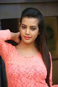diksha panth sizzling pics-thumbnail-15