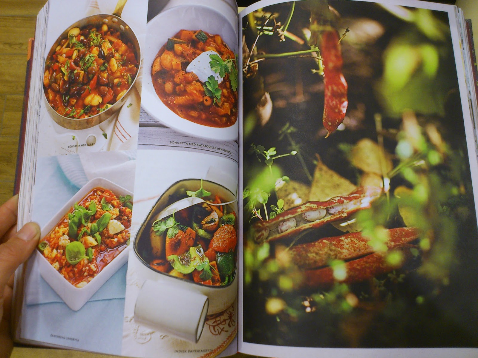min första vegetariska kokbok