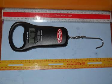 Berkley Digital Scale NEW w/out box RM145