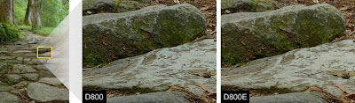 Nikon D800E 36.3 MP comparation betwen D800 and D800E 2