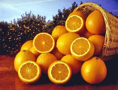 """De preferencia, debe consumirse sola, """" La naranja es oro por la ..."""