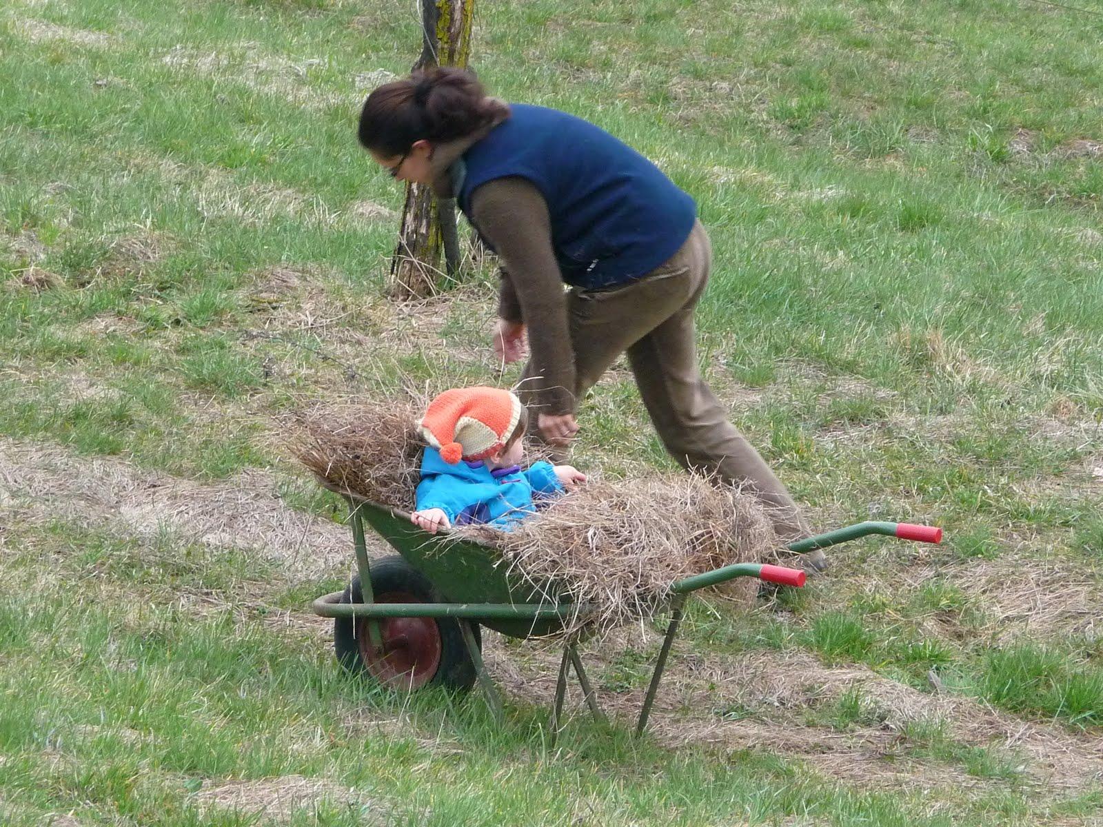Pachamama e... : Un pezzettino alla volta si fa l'orto...