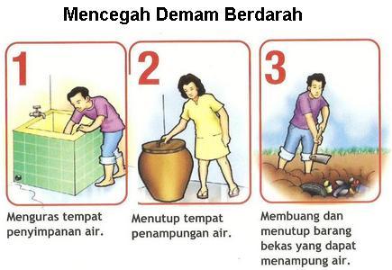 mencegah demam berdarah