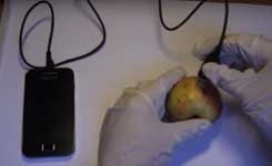 Charging Phone with a fruit