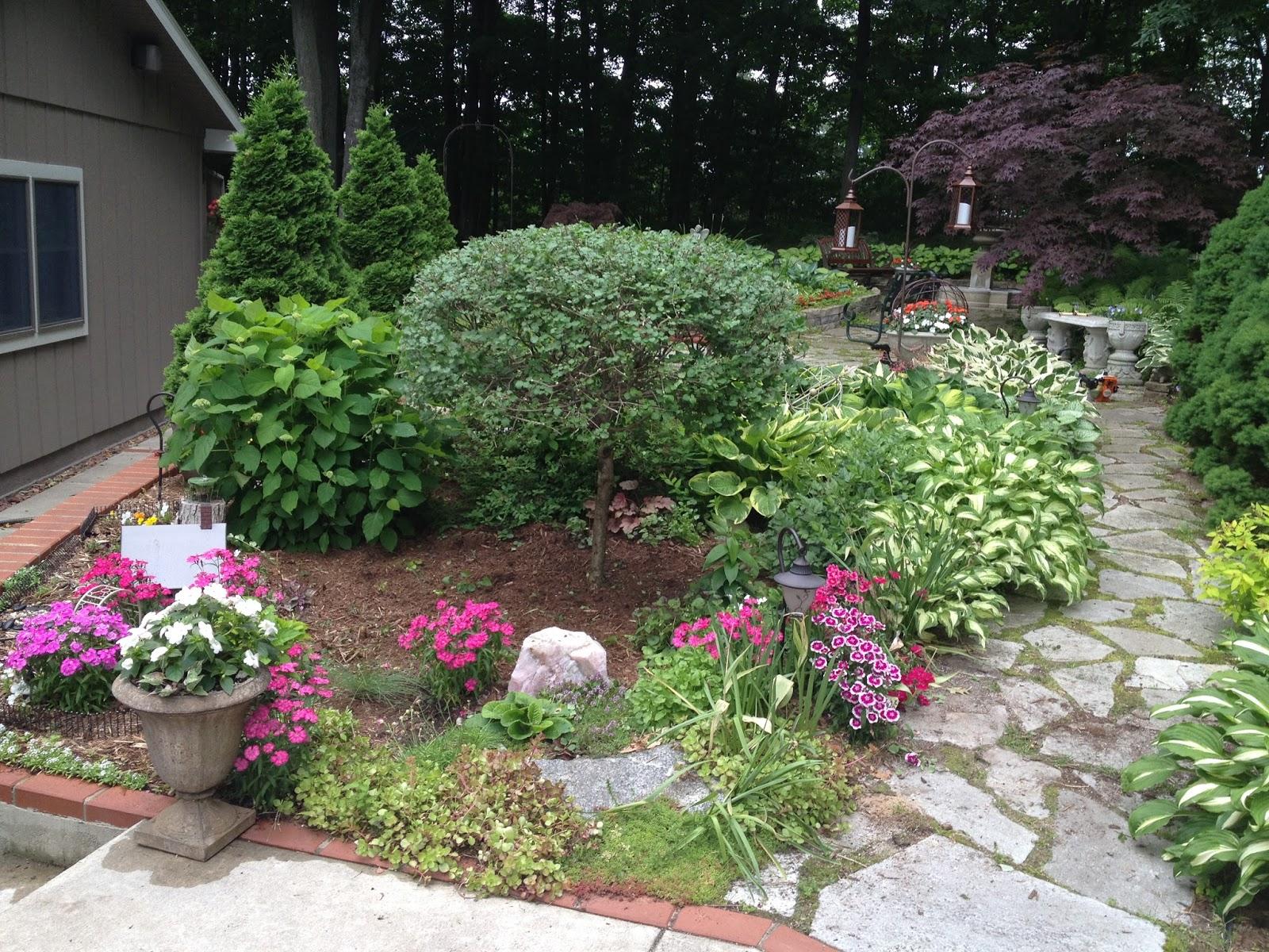 Home And Gardening With Liz Rock Garden Sedum And Whites Flowers