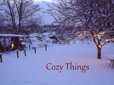 Cozy Things