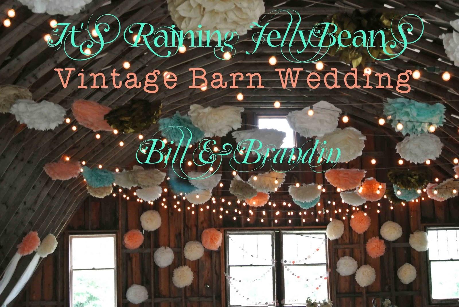 Its raining jellybeans wedding tulle wall tutorial wedding tulle wall tutorial junglespirit Images