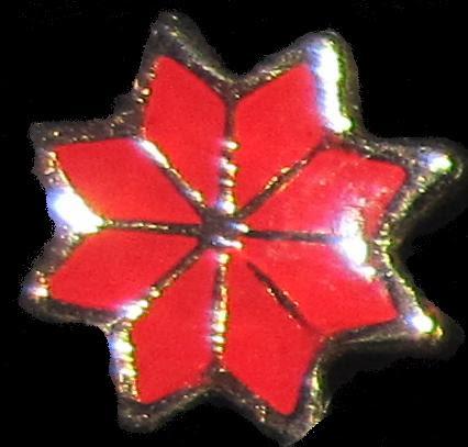 Estrella Federal Esmalte