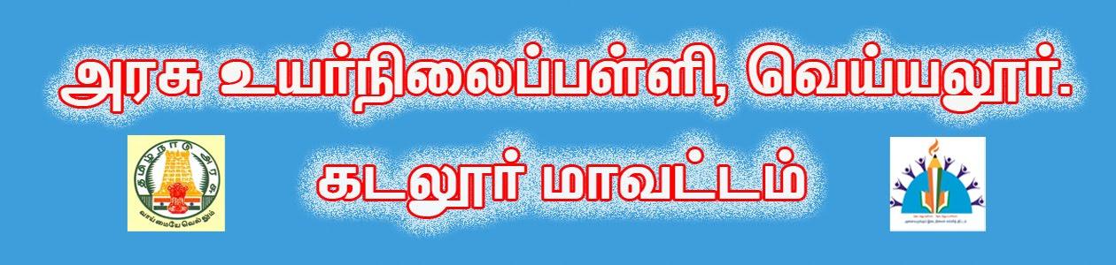 அரசு உயர்நிலைப்பள்ளி, வெய்யலூர்