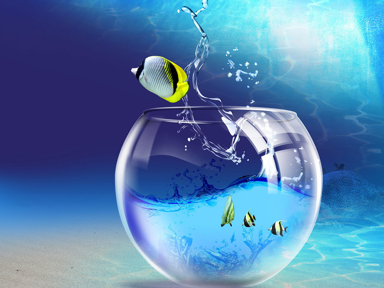 http://4.bp.blogspot.com/-Kv2x_uOligk/TaF5WcZbjYI/AAAAAAAAAMs/zi8W2Go6WVI/s1600/1267152664_1600x1200_windows-7-wallpaper-fish-tank.jpg