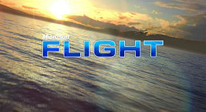 Microsoft Flight Simulator 2011