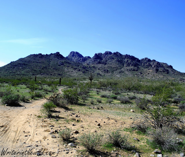 Phoenix Mountains