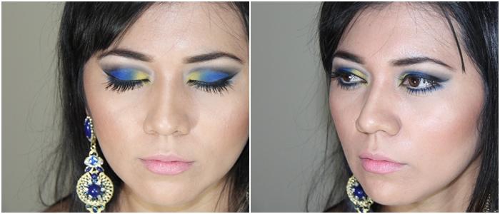 Série Natureza:Inspiração Arara Azul