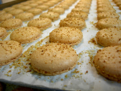 Jean-Marie Osmont - Conflans Sainte Honorine - Macarons beurre salé