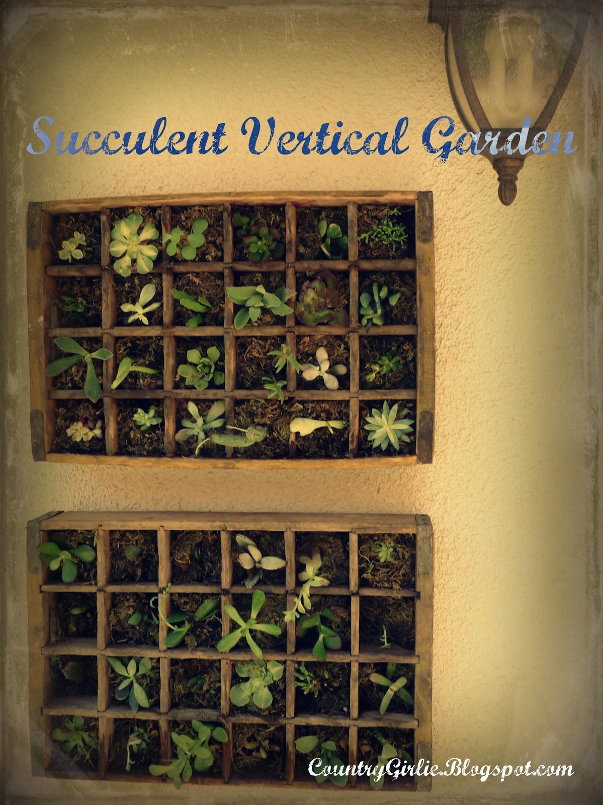 Country Girlie: Succulent Wall - Vertical Gardening - TUTORIAL