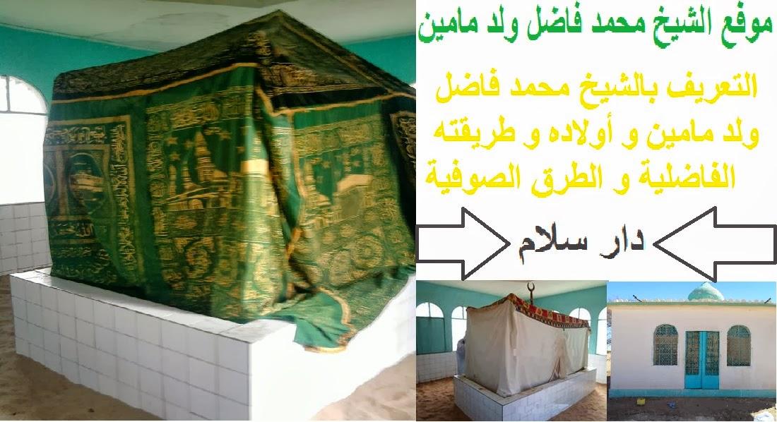 الشــــيخ محمد فاضـــل  ولد ما ميــــن