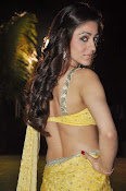 Aksha pardasany latest hot pics-thumbnail-5