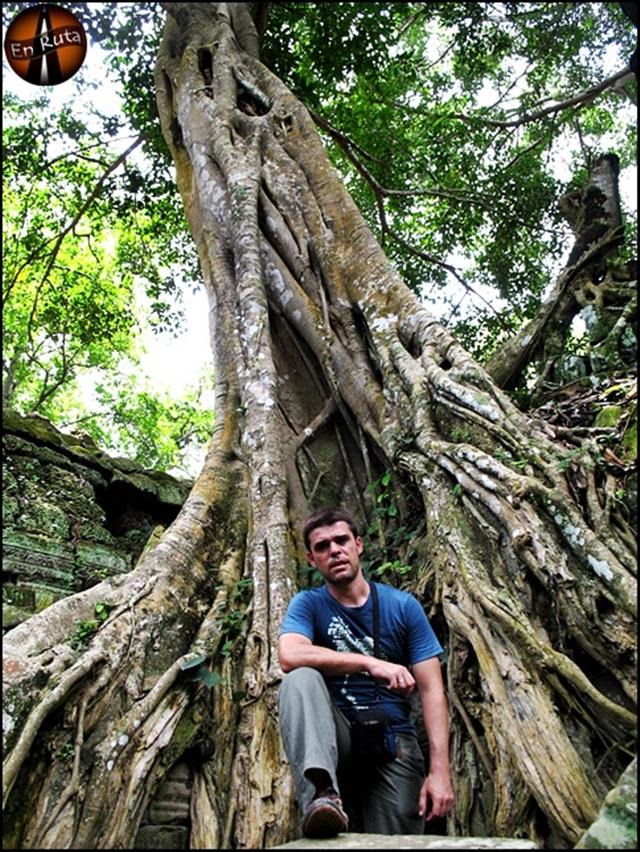 Ta-Prohm-Templos-de-Angkor_18