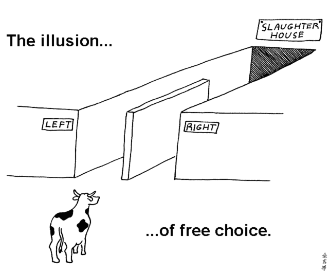 The illusion ...  ... of free choice.