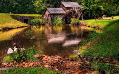 Casita junto al lago de los patos - Cottage