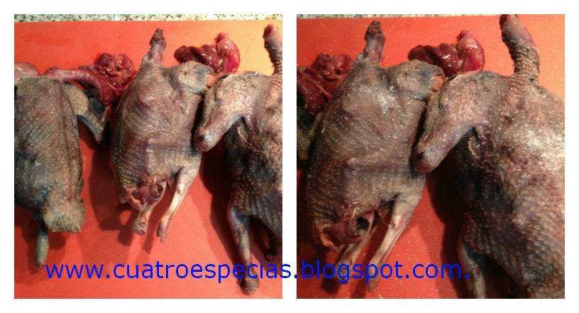 cuatro especias por elena zulueta de madariaga palomas