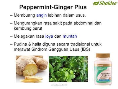 peppermint ginger plus shaklee untuk ibu mengandung