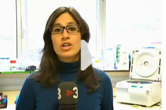 La noticia en el Tele Notícies Migdia de TV3 del 12 de Abril