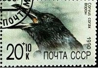 Raven in Stamp