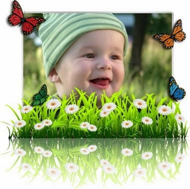 efecto de foto flores y mariposas