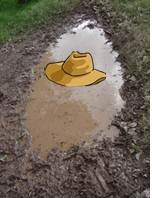 Hat in Puddle