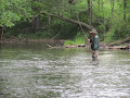 Tenkara On The Swift - Book A Trip