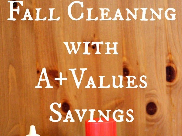 Fall Cleaning with A+ Values