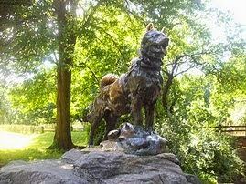 Balto, One of the most visited statues by Central Park Pedicab Tours