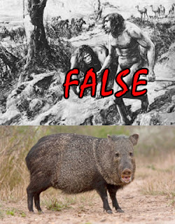 Evolution is a Lie - Intelligent Design is the Truth! Nebraska-man-truth
