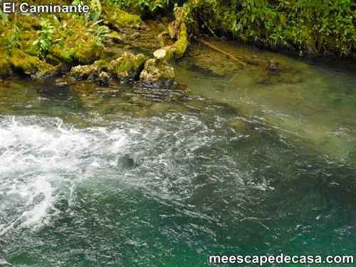 Aguas verdosas del río Tioyacu (Rioja, Altomayo, Perú) 1