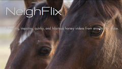 Neighflix