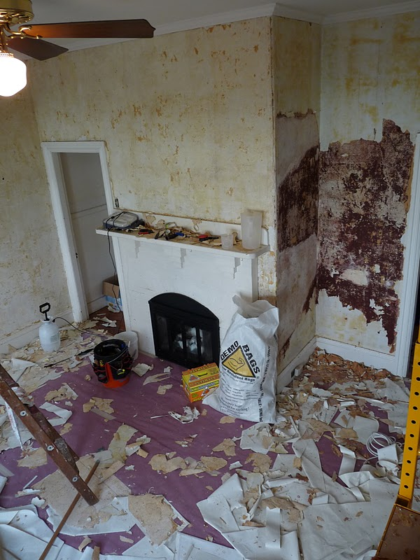 remove painted wallpaper steamer