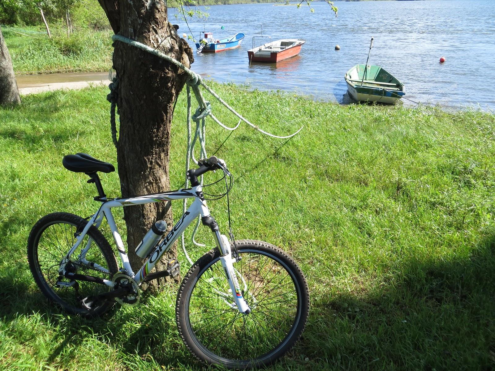 Ruta en bici por el Miño