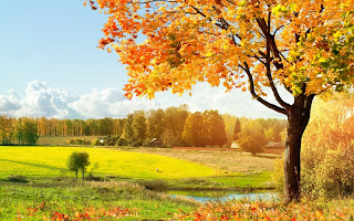 Beautiful PlacesMost Places In The WorldAmazing PlacesBeautiful Wallpapers HDBeautiful And Dashing Pics
