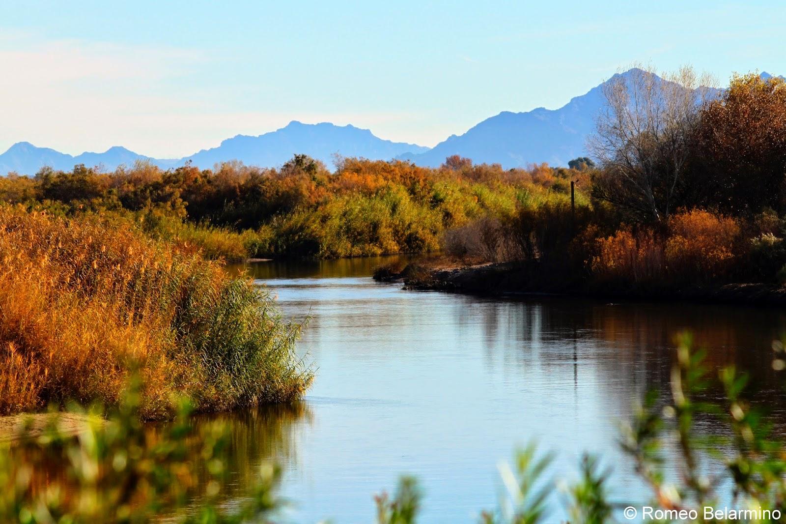 Colorado River Yuma Arizona
