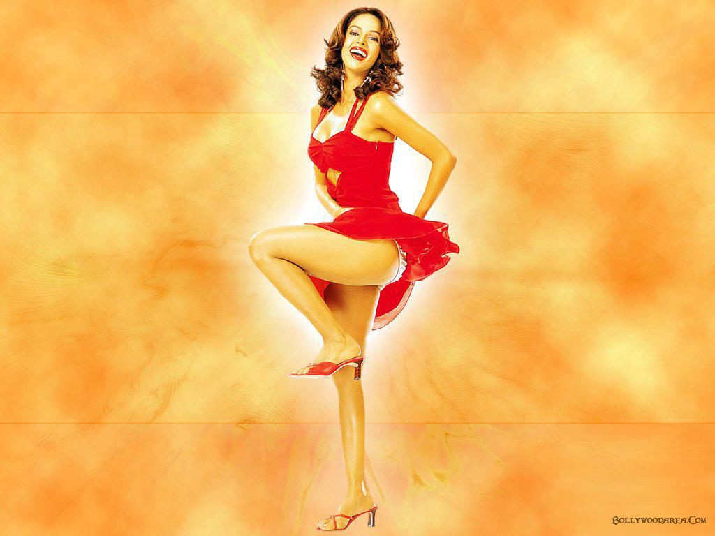 wallpapers mallika sherawat bikini - photo #22