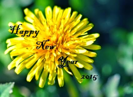 Greeting Happy New Year Wishes 2015 – Wishing Wallpapers